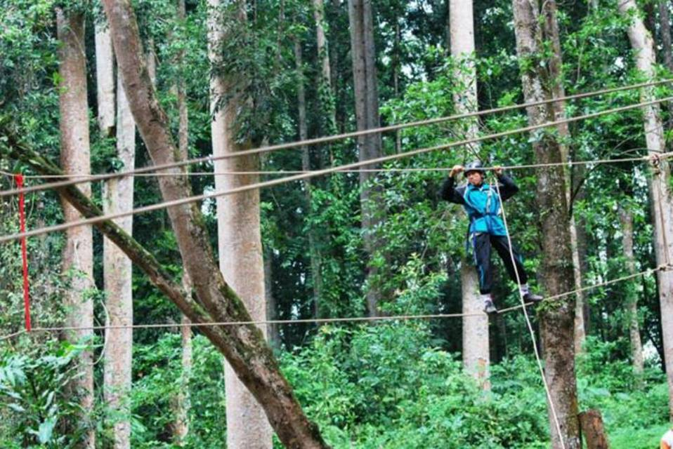 The rope bridge, Flying Fox