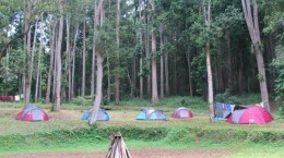 camping ground 1