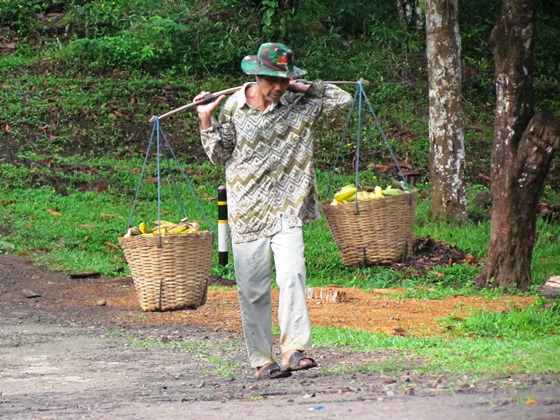 penjual pisang (hasil kebun sendiri)