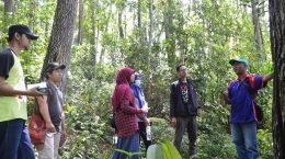 Studi Banding oleh Pusat Kajian dan Edukasi Hutan (Puskasitan) Olat Banga Universitas Teknologi Sumbawa
