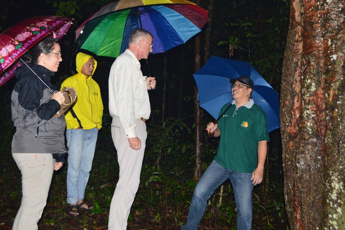 Studi banding pengelolaan hutan oleh peneliti dari Forest State Agency of Hessen Forst Germany