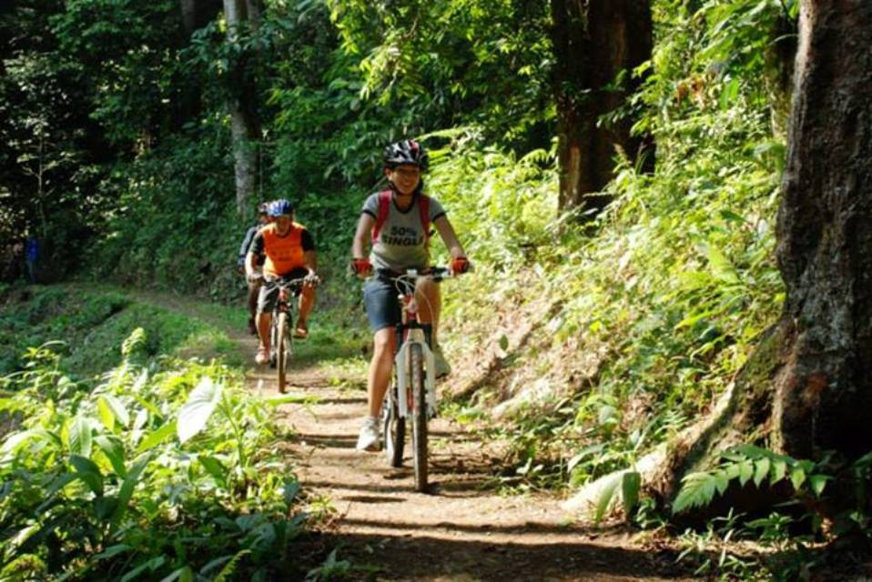 Track Sepeda Gunung