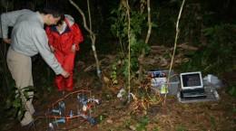 penelitian kyoto university di hpgw hutan pendidikan gunung walat