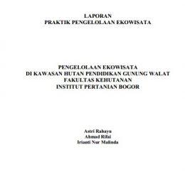 2013_laporan PPE