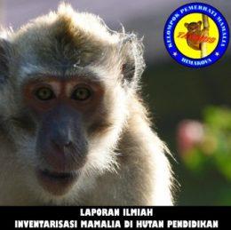 2013_laporan mamalia