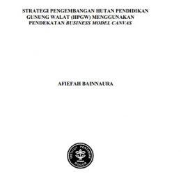 2014_strategi pengembangan