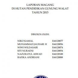 2015_laporan magang