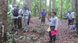 Diklat Pusat Penelitian dan Pengembangan Hutan (Puslitbanghut) Kementerian Lingkungan Hidup dan Kehutanan