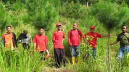 Peninjauan tanaman kerjasama oleh PT TOSO Industry Indonesia tahun 2013