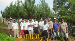 Peninjauan tanaman kerjasama oleh PT TOSO Industry Indonesia tahun 2015