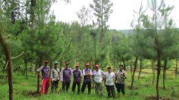 Peninjauan tanaman kerjasama oleh PT. TOSO Industry Indonesia tahun 2017