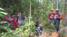 Praktik Tata Kelola Hutan Universitas Riau UNRI 2017